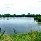 Summer Biking at Lake Renwick Preserve, Plainfield