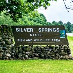 Hiking at Silver Springs State Park